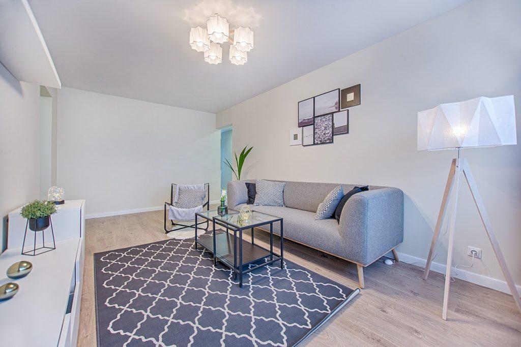 Petit salon avec tapis gris et petit canapé gris